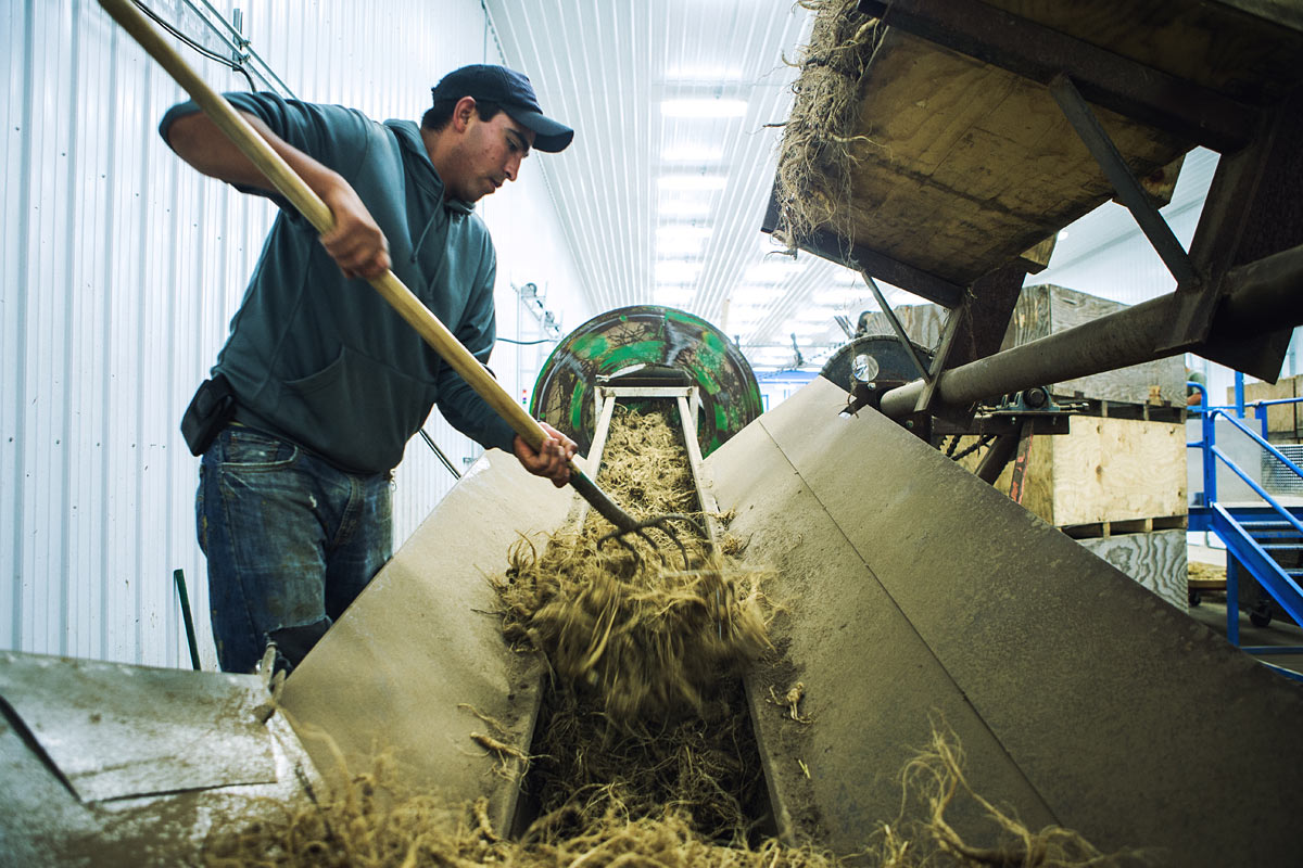 baumann_farms_wausau_wisconsin_ginseng_farmin_commercial_photography_advertising_portrait_midwest_photographer_33