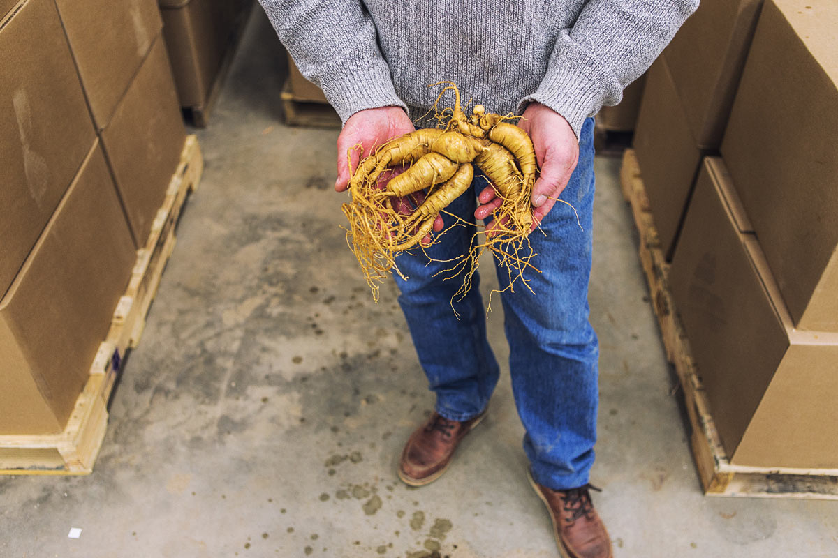 baumann_farms_wausau_wisconsin_ginseng_farmin_commercial_photography_advertising_portrait_midwest_photographer_55